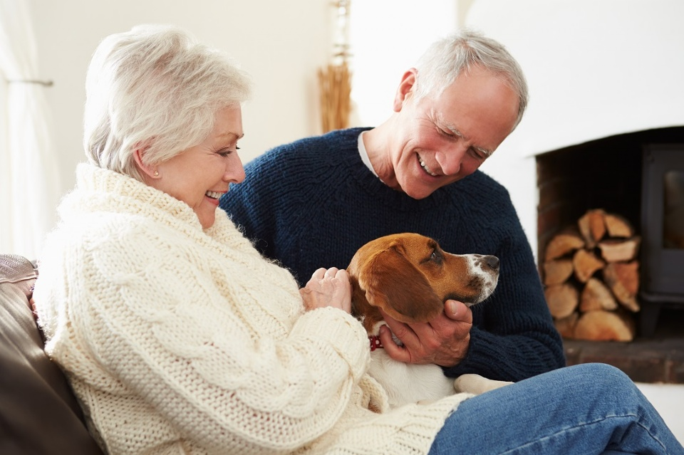 The Benefits of Caring for a Pet  | Laval Families Magazine | Laval's Family Life Magazine