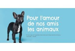 First Animal Exposition in Laval